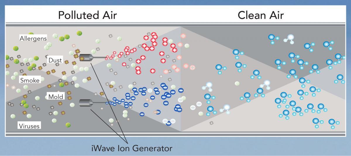 Air Cleansing Diagram